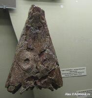 Benthosuchus sushkini