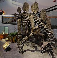 220px-Hesperosaurus Museum of Ancient Life 3