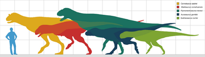 1920px-Carnotaurini sizes updated