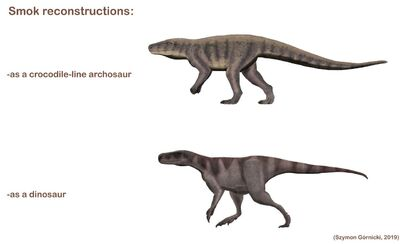 Comparison of two Smok reconstructions by Szymon Górnicki