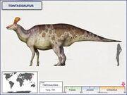 Циньтаозавр 5