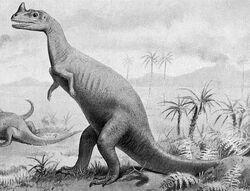 Ceratosaurus (Joseph Smit, 1911)