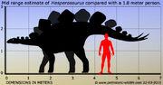 Hesperosaurus-size