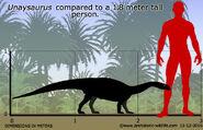 Unaysaurus-size
