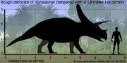 Torosaurus-size