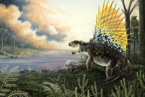 Dimetrodon-grandis franz-anthony