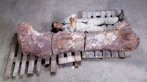 Gigant Titanosaur 02