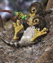 8216d61b8109b969c28daa5705ec6923--extinct-animals-prehistoric-animals