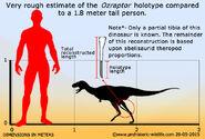Ozraptor-size