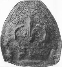 Hallipterus excelsior карапакс