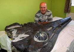 Michael Harrison with his 90 million year old Ichthyosaur that he found near Lyme Regis