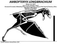 Амбоптерикс 3