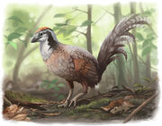 Jinfengopteryx junglefowl by ewilloughby-dbly0b7