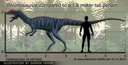 Dilophosaurus-size