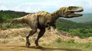Theropod image
