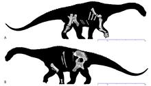 Дайамантинозавр 3