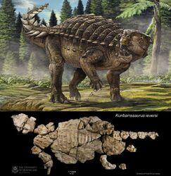 Kunbarrasaurus ieversi-novataxa 2015-Leahey-Molnar-Carpenter-Witmer-et-Salisbury