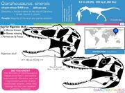 Qianzhousaurus size 02