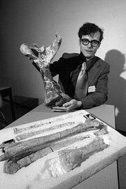 Dr. Douglas Lawson holds the humerus of the giant pterosaur Quetzalcoatlus northropi.