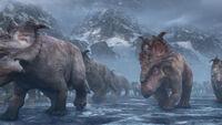 Pachyrhinosaurus image