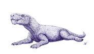 1288 gorgonops david arruda mourao