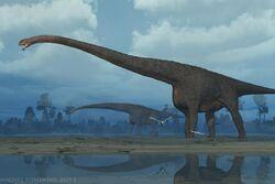 Mamenchisaurus image 02