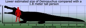 Deinosuchus-size