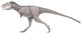Горгозавр-подросток