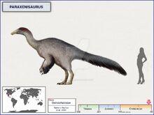 Параксенизавр