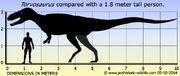 Torvosaurus-size