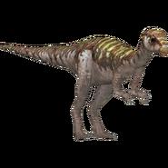 Leaellynasaura (HENDRIX)