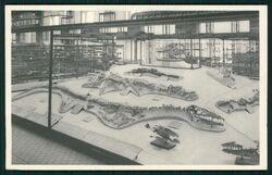 Mоsasaurus lemonnieri, 1920