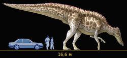 Шаньдунозавр размер