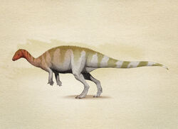Камптозавр4