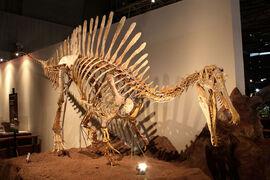 Спинозавр543