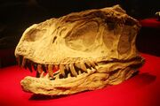 Янхуанозавр-0
