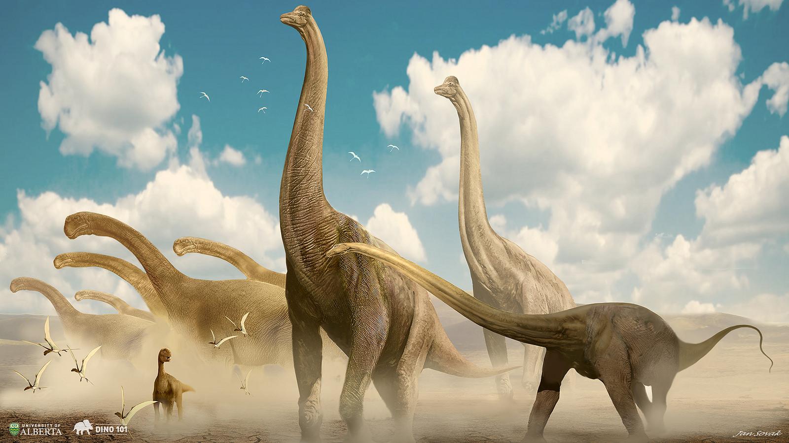 apatosaurus vs diplodocus - 900×554