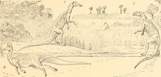 Trachodon, Kritosaurus, Corythosaurus The origin and evolution of life (Osborn,1917)
