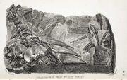 Hylaeosaurus of The Wonders of Geology, 1840
