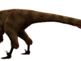 Дромеозавроидес