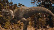 When Dinosaurs Roamed America Allosaurus