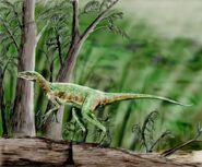 Eoraptor BW
