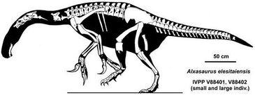 Alxasaurus-skelet