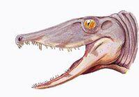 240px-Secodontosaurus obtus1DB
