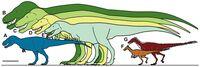 Сравнение тираннозаурид с некоторыми другими тераподами