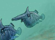 Rostropycnodus 2