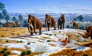 Image-Woolly-Mammoths