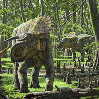 Nasutoceratops-2-m
