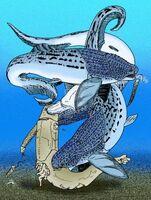 Protitanichthys fossatus by avancna-d6cxg88