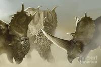 Pachyrhinosaurus image 01
